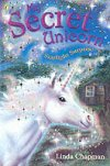 Starlight Surprise (My Secret Unicorn Bk 4) by Linda Chapman