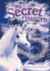 A Winter Wish (My Secret Unicorn Bk 7) by Linda Chapman